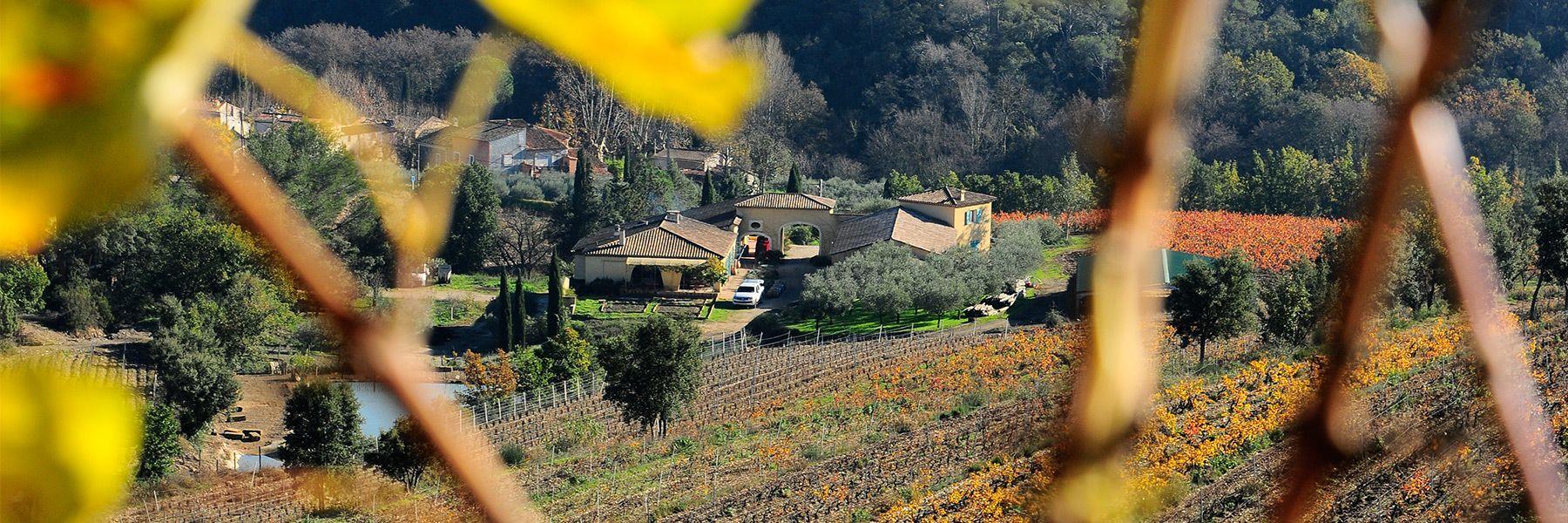 Domaine viticole la Tour des Vidaux